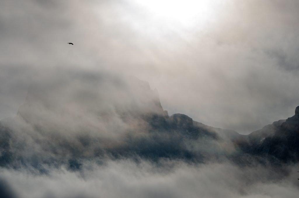 Uccello che vola tra le nuvole dell'Alpe di Siusi - Foto di Giulia Cimarosti