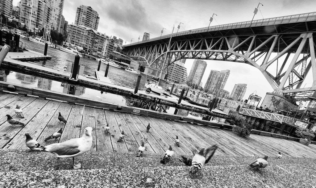 Vancouver in bianco e nero
