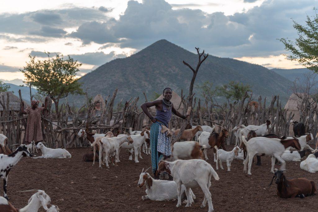 Uomo Himba con Capre