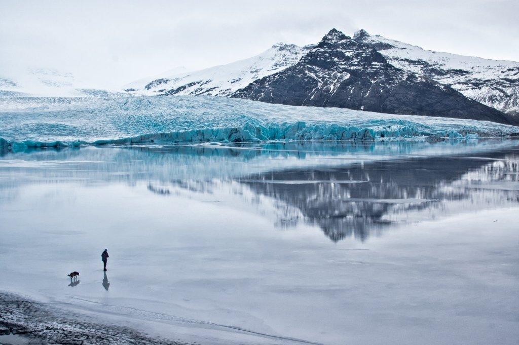 Uomo e Cane sul Ghiaccio a Fjallsarlon, Islanda