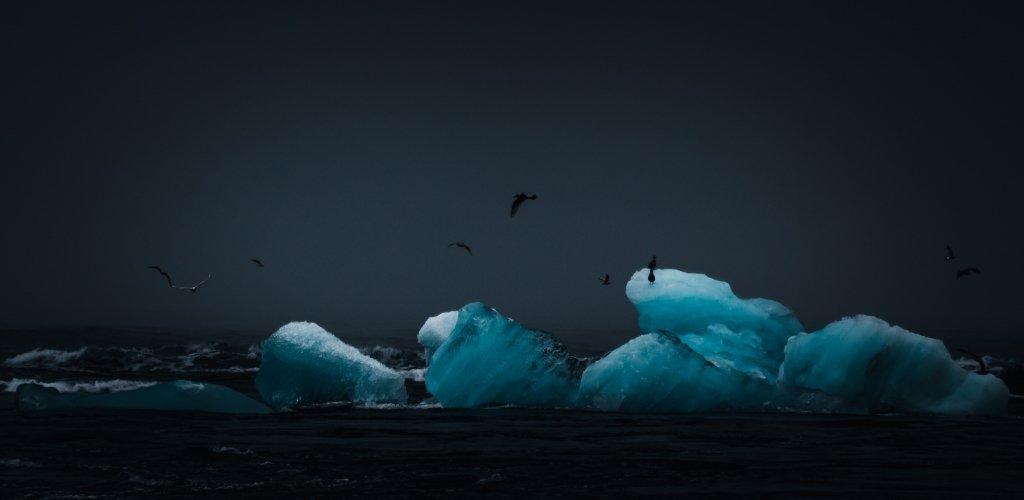 Jokulsarlon, Islanda: Iceberg e uccelli