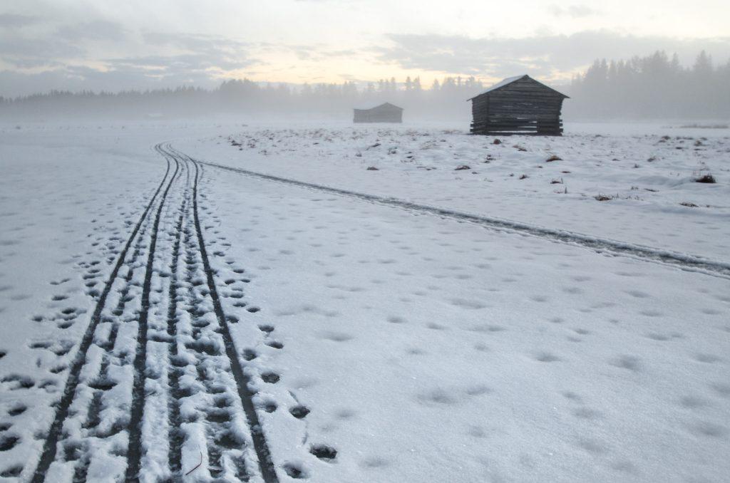 Tracce di slitta nella neve in Lapponia Svedese