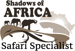 Giulia Cimarosti Safari Specialist at Shadows of Africa