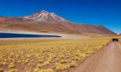 Deserto-Atacama-Viaggio